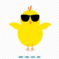 Boy Easter Chick SVG File, Chick Glasses - Digital Download for Cricut and Silhouette. Digital Product SVG file studio